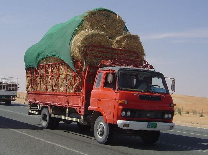 Mitsubishi Camel fodder transporter, UAE