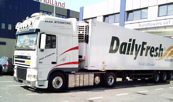 Brain International DAF 530
