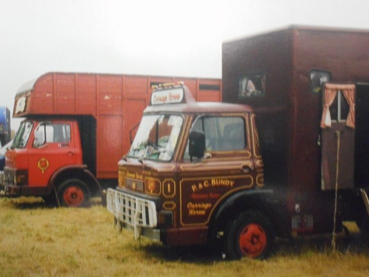 A pair of Ford D Series