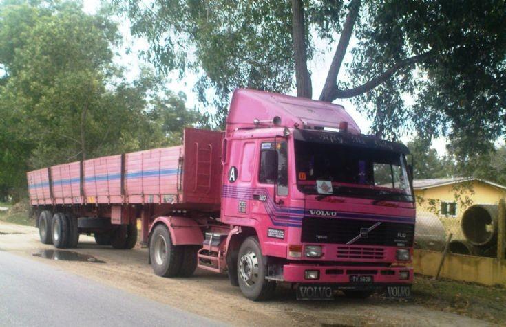 Pinky Volvo FL10 in Malaysia